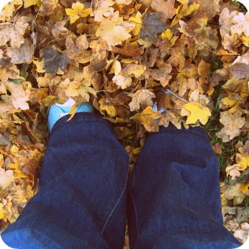 Spaziergang im Herbstlaub