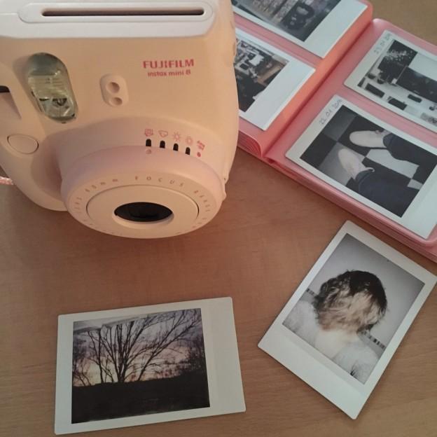 2016 schieße ich täglich ein Bild mit meiner Fuji Instax 8